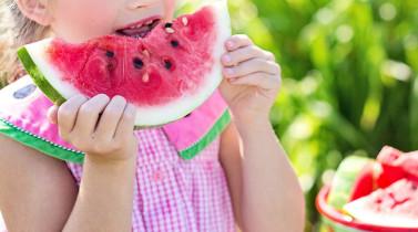 AECS promovem hábitos alimentares saudáveis