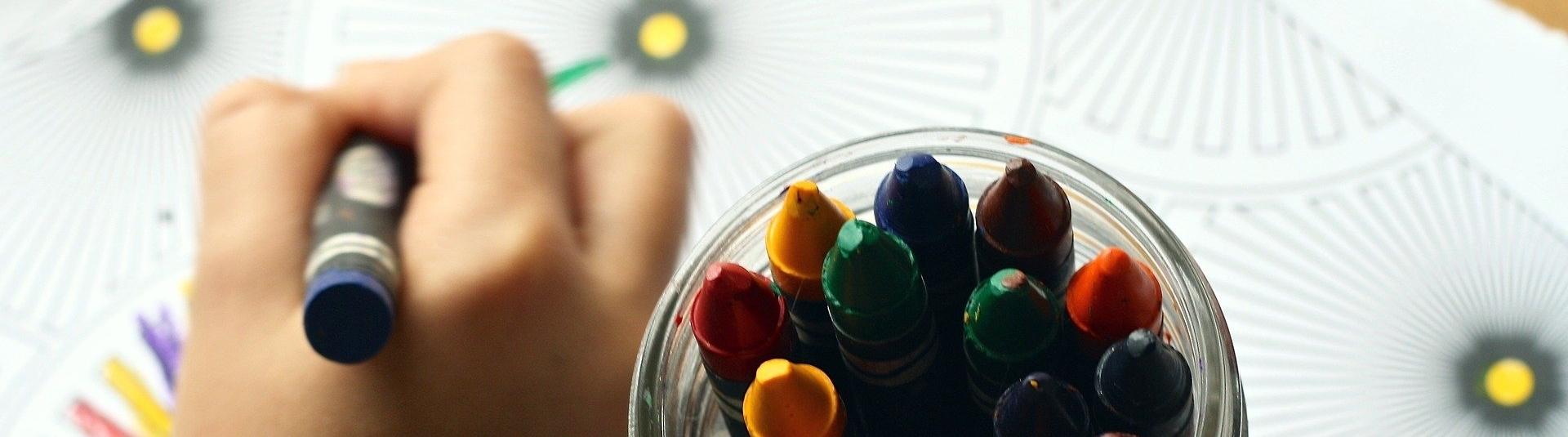 AAAF,CAF,Refeições Escolares e Transporte Escolar com candidatura alargada